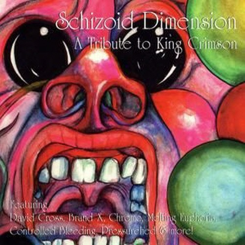 [중고] V.A. / Schizoid Dimension - A Tribute To King Crimson (수입)
