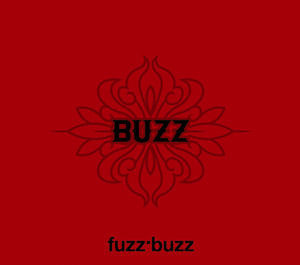 [중고] Buzz(버즈) / Fuzz.Buzz (Digipack/홍보용)